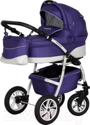 Детская универсальная коляска Riko Modus 2 в 1 (08) - общий вид