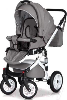 Детская универсальная коляска Expander Essence 2 в 1 (01) - общий вид