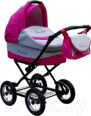Детская универсальная коляска Expander Charlotte 2 в 1 (68) - общий вид