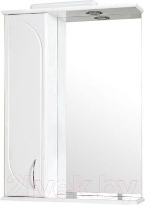 Шкаф с зеркалом для ванной Аква Родос Оптима ZSP 60 (левый)