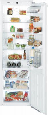 Холодильник без морозильника Liebherr IKB 3620 - общий вид