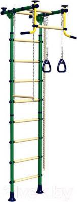Детский спортивный комплекс Romana Комета-2 ДСКМ-2-8.06.T.490-11 (зеленый/желтый)