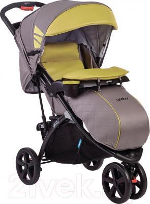 Детская прогулочная коляска Geoby C922 (RPWH) - общий вид