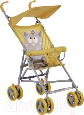 Детская прогулочная коляска Geoby D202A-F (RCSM) - общий вид