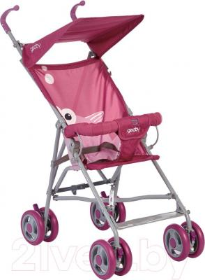 Детская прогулочная коляска Geoby D202A-F (RZXY) - общий вид
