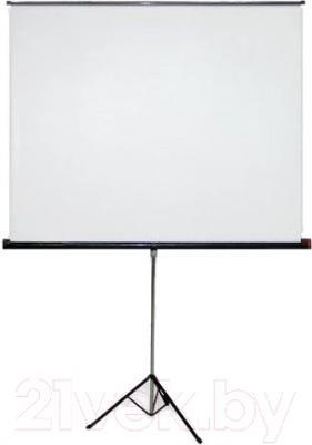 Проекционный экран Classic Solution Gemini 213x213 (T 205x205/1 MW-LU/B)