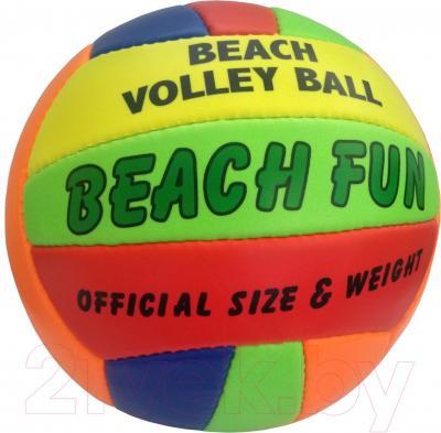 Мяч волейбольный Runway 1104