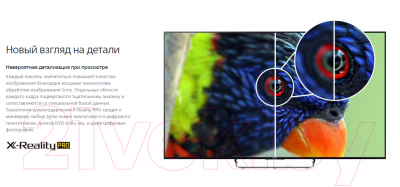 Телевизор Sony KDL-43W807CS