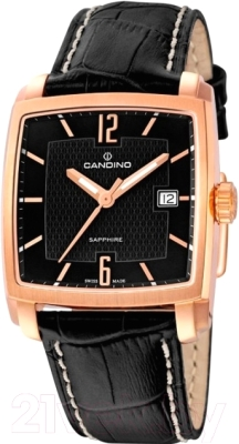 Часы мужские наручные Candino C4373/8