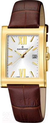Часы мужские наручные Candino C4461/9