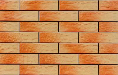 Фасад клинкерный Cerrad Atakama (245x65)