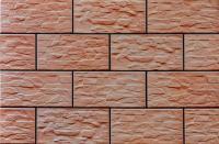 Фасад клинкерный Cerrad CER 22 Радонит (300x148) -