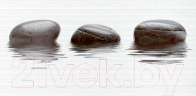 Декоративная плитка для ванной Нефрит-Керамика Фреш (500x250, черный)