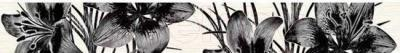 Бордюр для ванной Нефрит-Керамика Piano Черный (400x50)