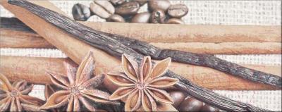 Декоративная плитка для кухни Opoczno Penne Coffee 2 OD018-006 (500x200)