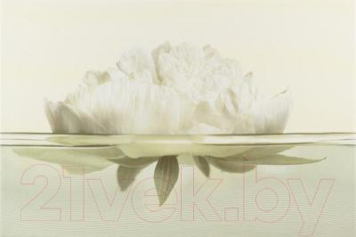 Декоративная плитка Opoczno Flora Пивония (450x300)