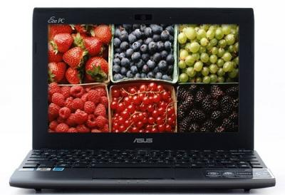 Ноутбук Asus EEE PC 1025C-GRY008S - Главная