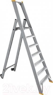 Лестница-стремянка iTOSS Forte 9309 - общий вид