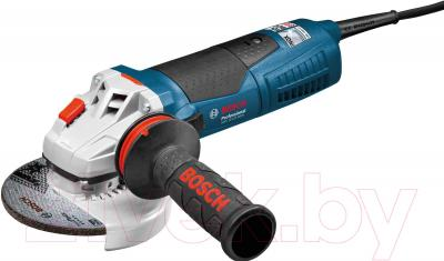Профессиональная болгарка Bosch GWS 15-125 Inox Professional (0.601.79X.008) - общий вид