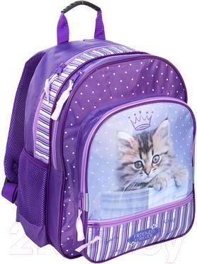 Школьный рюкзак Paso RHJ-180