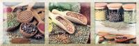 Декоративная плитка для кухни Monopole Exquisit B Brillo (300x100) -
