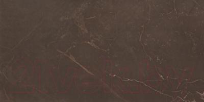 Плитка AltaCera Marble Marron WT9MRB21 (500x249)