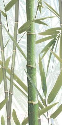Декоративная плитка AltaCera Bamboo 1 DW9BMB104 (500x249)