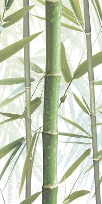 Декоративная плитка AltaCera Bamboo 3 DW9BMB304 (500x249)