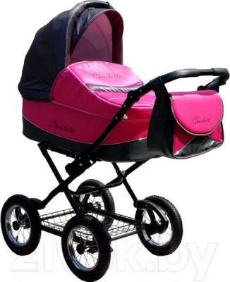 Детская универсальная коляска Expander Charlotte 2 в 1 (74) - общий вид