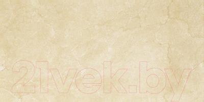 Плитка Ceramika Paradyz Inspiration Brown (600x300)