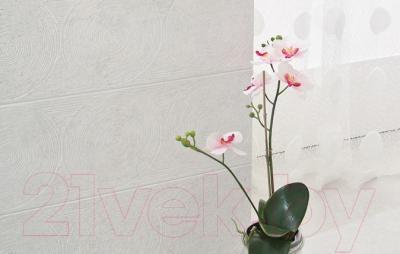 Декоративная плитка для ванной Ceramika Paradyz Nirrad Grys Struktura (600x200)