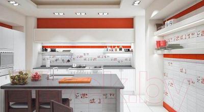 Декоративная плитка для кухни Monopole Vitaminic C (300x100)
