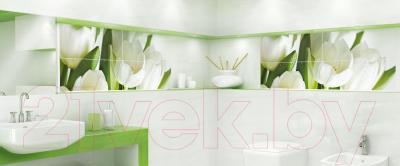 Плитка для пола ванной Ceramica Marconi Arco Verde (300x300)