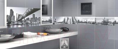 Декоративная плитка для ванной Ceramica Marconi Fortuna Digital Paris (600x250)