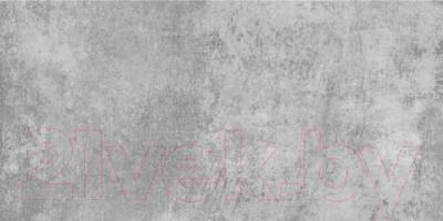 Плитка для стен ванной Керамин Нью-Йорк 1с (600x300)