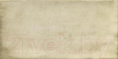 Плитка Mainzu Treviso S Blanco (200x100)