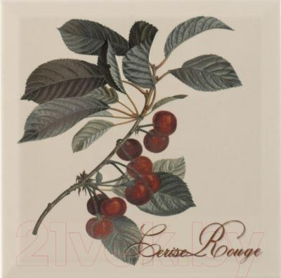 Декоративная плитка для кухни Monopole Provence Cerise (200x200)