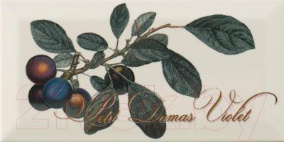 Декоративная плитка Monopole Provence Prune (200x100)
