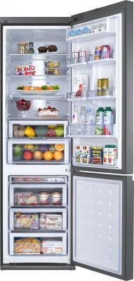 Холодильник с морозильником Samsung RL55TTE2A1 - общий вид