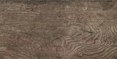 Плитка Tubadzin Traviata Brown (608x308)