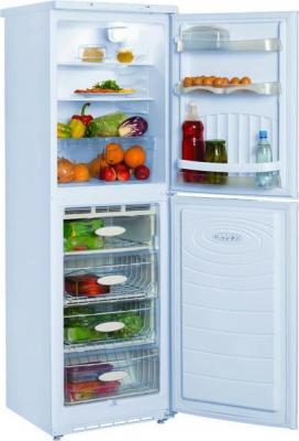 Холодильник с морозильником Nord ДХ 219-7-010 - общий вид