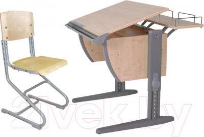 Парта+стул Дэми СУТ 14-01 (серый, клен) - общий вид