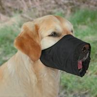 Намордник для собак Trixie 1921 (XS-S, черный) -