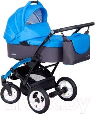 Детская универсальная коляска Expander Naomi 2 в 1 (161)
