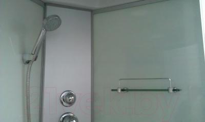 Душевой бокс Coliseum 8605 L (серый/тонированные стекла)
