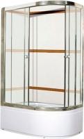 Душевой уголок Coliseum Satriya 100 L (тонированное стекло) -