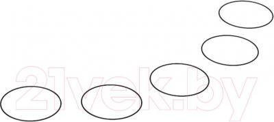 Уплотнительные кольца Replay XD Prime X (5шт)