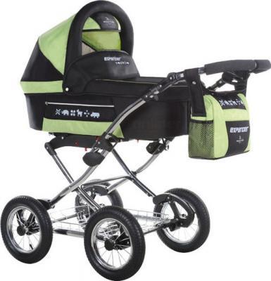 Детская универсальная коляска Bebetto Expander (P2LC3R) - общий вид