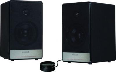 Мультимедиа акустика Microlab H-11 (H-11-3154) - общий вид