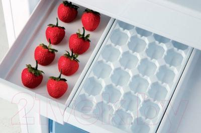 Холодильник с морозильником Beko RCNK320K21W - поддон для ягод IceBank